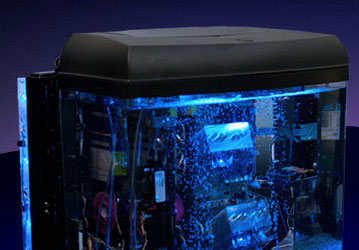Custom Pc Mineral Oil Submerged Computer